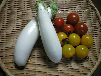 白ナスとプチトマト