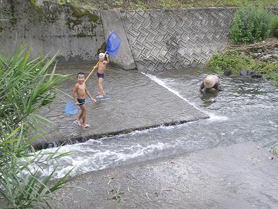 魚沼の三用川で川遊び!
