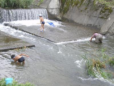 魚沼の三用川で川遊び