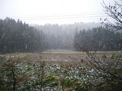 南魚沼では初雪が降りました。