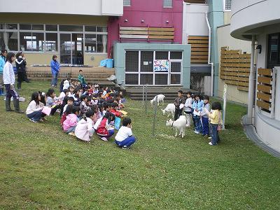 ヤギと子供達のお別れ会