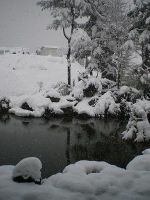 魚沼は雪国