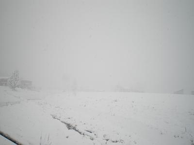魚沼では雪!