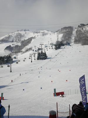 苗場スキー場です。