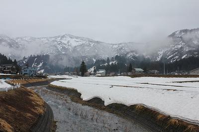 魚沼の山沿いでは雪です。