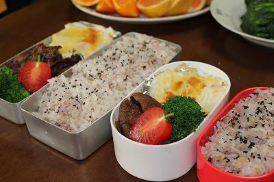 魚沼産コシヒカリのお弁当
