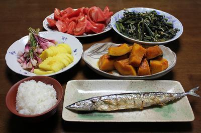 魚沼夕ご飯(春)