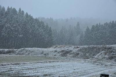 魚沼の初雪