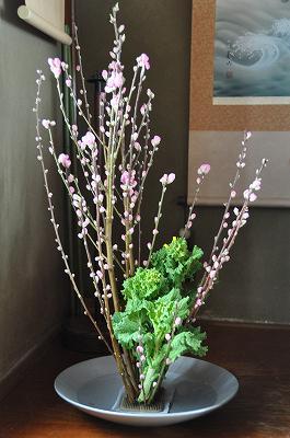 桃の花と菜の花