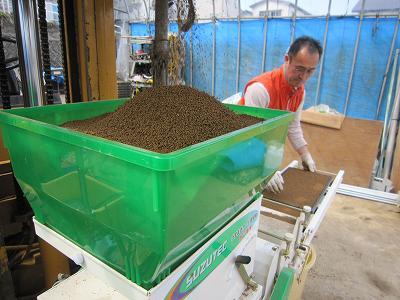 魚沼産コシヒカリのすじ蒔き