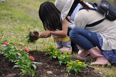 花壇の花植え