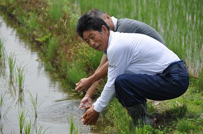 田んぼの水で手洗い