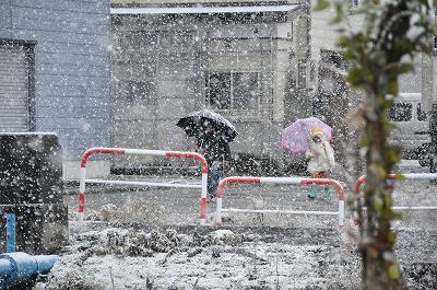 雪が降ってきまた