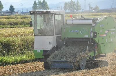 稲刈りのあと・・・