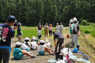とんぼ池の観察会
