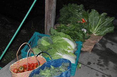 ばあちゃんの野菜