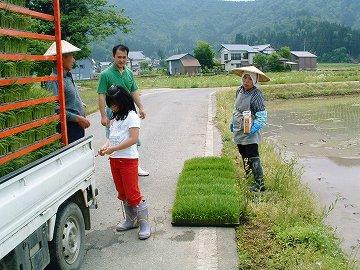 田植え作業の様子